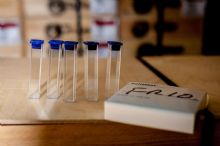 Test tubes for comparator - 5 pce